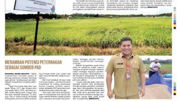Kembangkan Komoditi Utama, Desa Namang Unggulkan Beras Merah