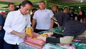 Presiden Blusukan ke Pasar Pagi Pangkalpinang Usai Bagikan Sertifikat Tanah