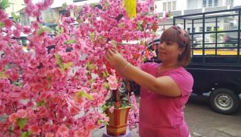 Rejeki Mengalir Sambut Imlek, Omset Pedagang Bunga Meihua Meningkat Tajam
