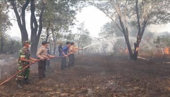 Satgas Karhutla Polres Pangkalpinang Padamkan Kebakaran di Kawasan Pantai Pasir Padi