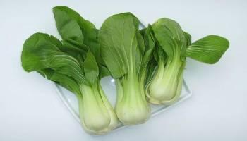 Tips Kesehatan: Pernah Dengar Sayuran Bok Choy? Ini Manfaatnya untuk Kesehatan