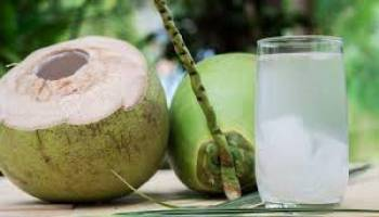 Tips Kesehatan: Saat Buka Puasa, Minum Air Putih, Teh Manis atau Air Kelapa?