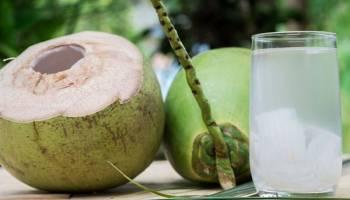 Tips Kesehatan: Sederet Manfaat Air Rebusan Kelapa untuk Kesehatan, Bisa Sembuhkan Daftar Penyakit Ini